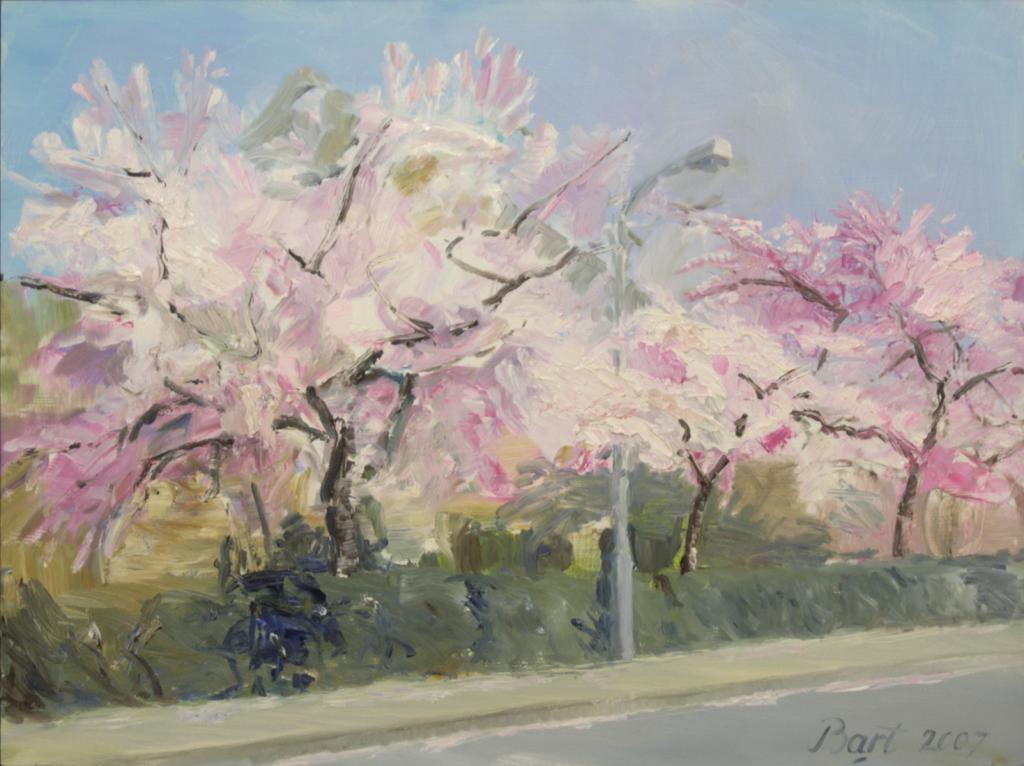 """""""Bloeiende bomen in Heelsum II"""", 2007"""