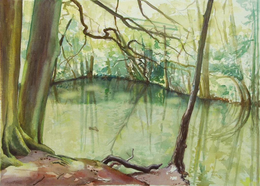 """""""Vijver in Oosterbeek"""", 2012"""