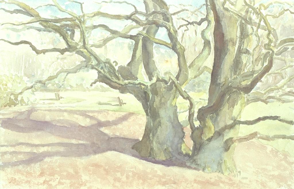 """""""Dubbele eik op de Duno"""", 1999"""
